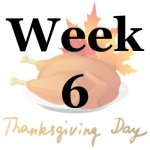 Week 6 of the Stress Free Holidays Challenge {on Household Management 101}