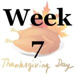 Week 7 of the Stress Free Holidays Challenge {on Household Management 101}