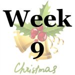 Week 9 of the Stress Free Holidays Challenge {on Household Management 101}
