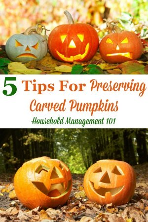 Here are 5 tips for preserving carved pumpkins and Jack-O-Lanterns so you can enjoy them longer during the Halloween season {on Household Management 101} #PreservingPumpkins #PumpkinCarving #PreserveCarvedPumpkins