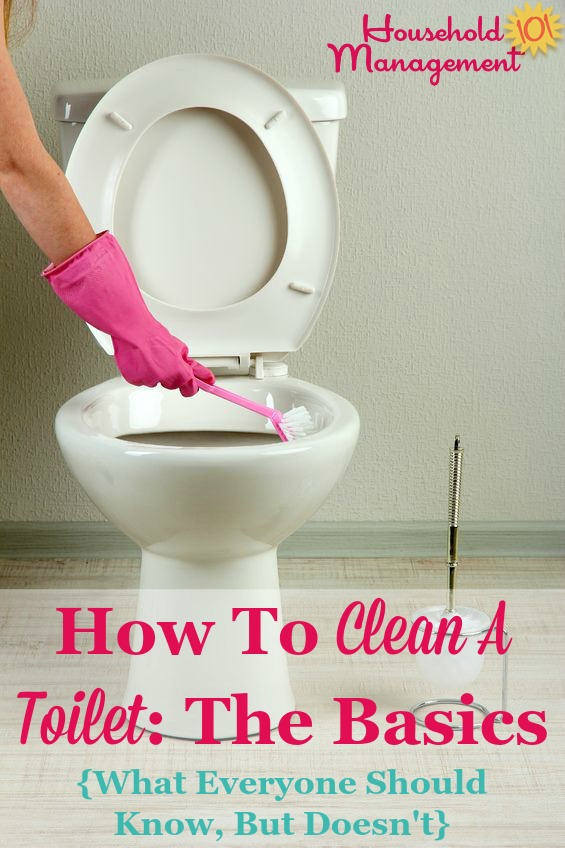 Basic instructions for how to clean a toilet, including what you should know about this process but perhaps don't {on Household Management 101} #BathroomCleaning #ToiletCleaning #CleaningTips
