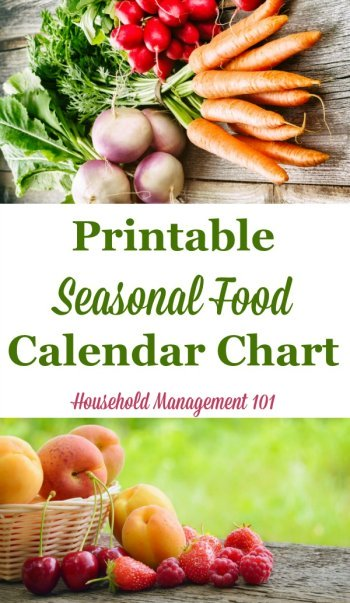 Free #printable seasonal food calendar chart, listing the produce in season in each of the four seasons, to help you with both meal planning and saving money {courtesy of Household Management 101} #MealPlanning #SaveMoney