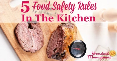 5 food safety rules in the kitchen to keep your family healthy and well fed {from Household Management 101}