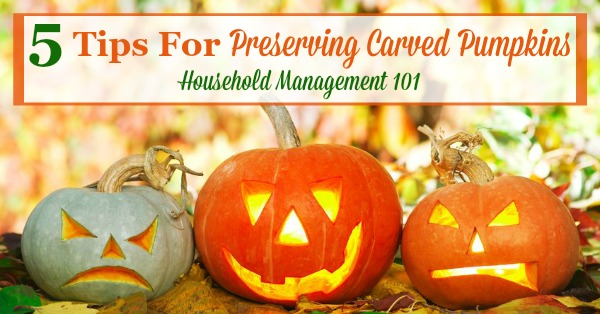 Here are 5 tips for preserving carved pumpkins and Jack-O-Lanterns so you can enjoy them longer during the Halloween season {on Household Management 101}