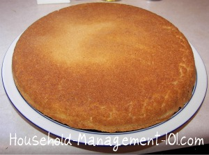 Old Fashioned Southern Cornbread 34