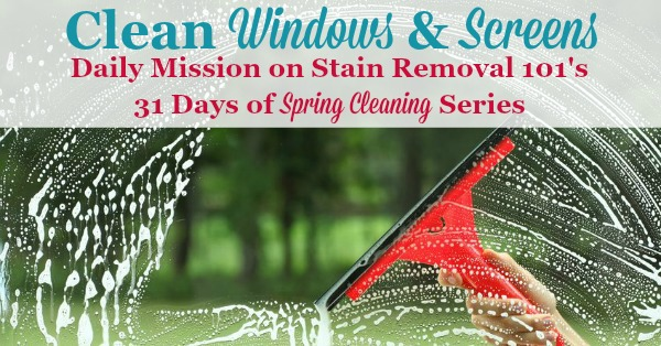 Clean windows and screens, the daily 31 days of #SpringCleaning mission on Stain Removal 101