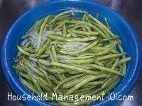 washing fresh green beans