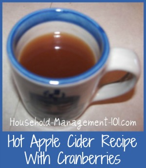 hot apple cider, with cranberries