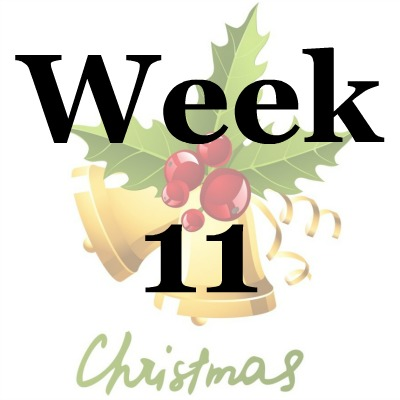 Week 11 of the Stress Free Holidays Challenge {on Household Management 101}
