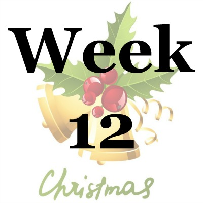Week 12 of the Stress Free Holidays Challenge {on Household Management 101}