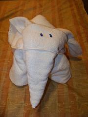 towel oragami