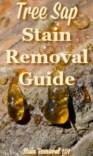 tree sap stain removal guide