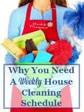 Weekly House Cleaning Schedules